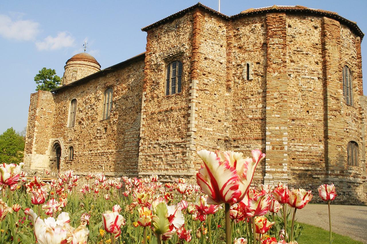 Image result for colchester castle